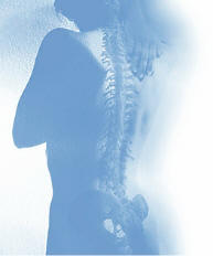 chiropractic is the adjustment of spinal subluxations
